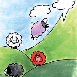 ערכת אוריה – הקורס הדיגיטלי והספר רב המכר לרא(ע)ות את הכבשים